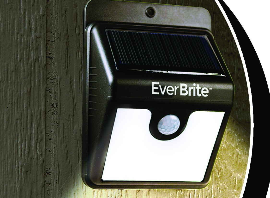 Buy Ever Brite Motion Activated Led Solar Light Black In